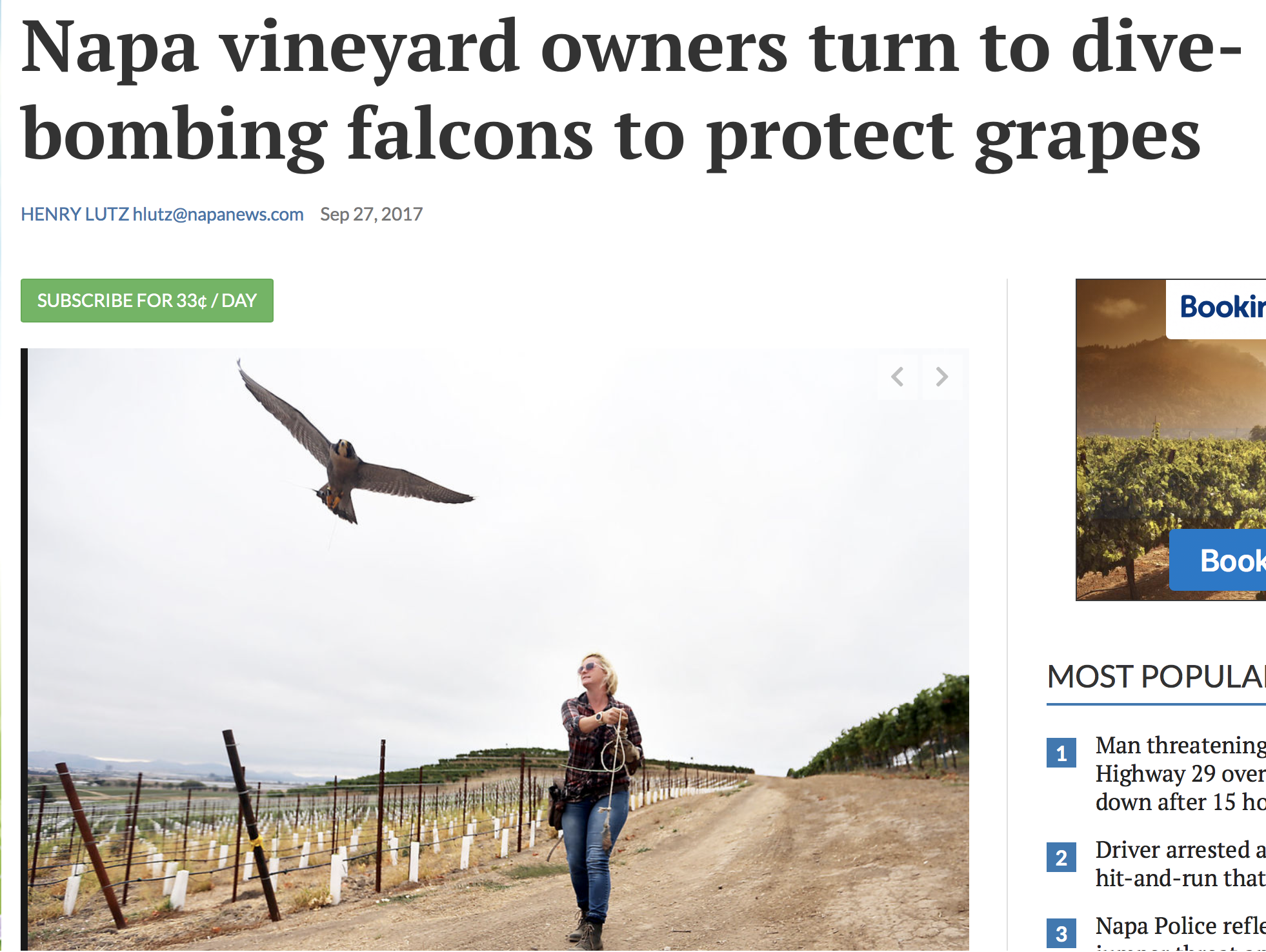 news article napa falconry